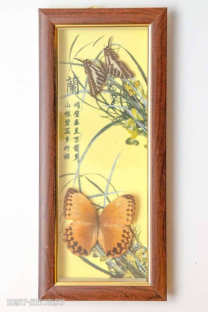 Бабочками в рамках панно своими руками